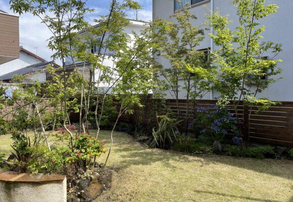 お庭のメンテナンス